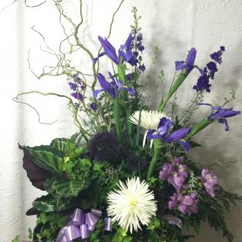 Dish Garden Glenwood Uptown Florist